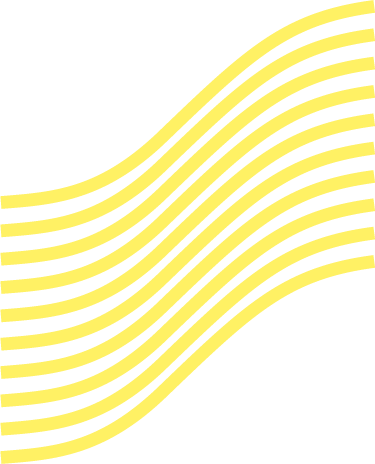 yellow_lines_gross.png